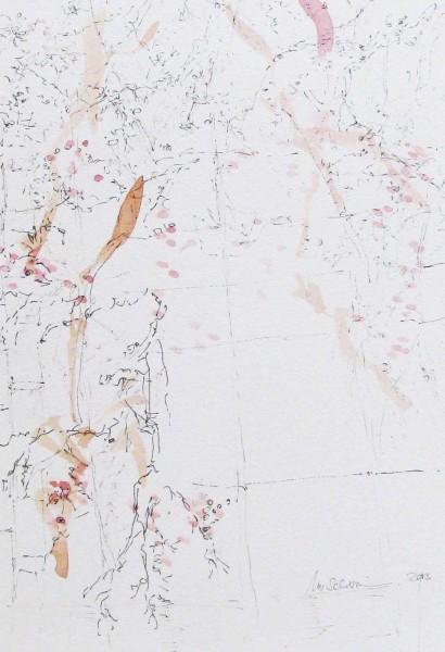 Botany 2, mixed media on paper, 34 x 24cm